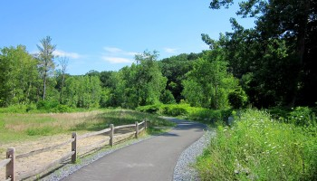 Spring Run Trail