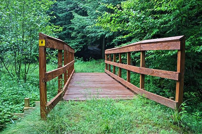 Coldbrook Preserve bridge
