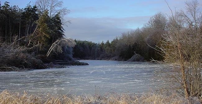 Galway Preserve pond