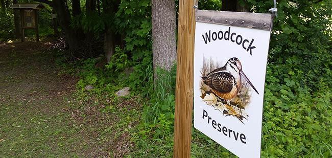 Woodcock Preserve