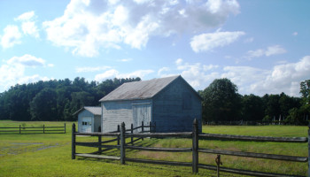 Pitney Farm Conservation Project