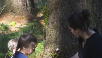 Rowland Hollow Creek Preserve